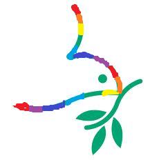 rainbow dove